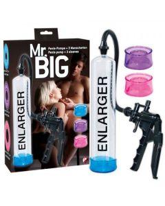 Penispomp - Mr. Big